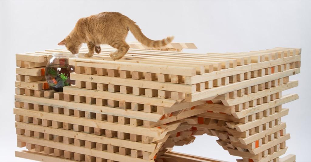 設計家居:別再買醜陋的貓屋了!來看看 Architects for Animals 2016 建築師設計的超美貓屋吧!