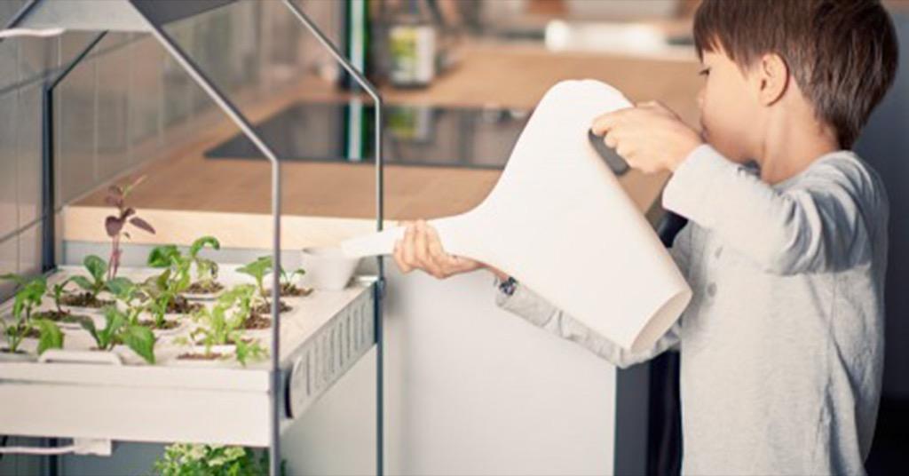 設計居家:IKEA 改良水耕系統,在家種菜變容易了