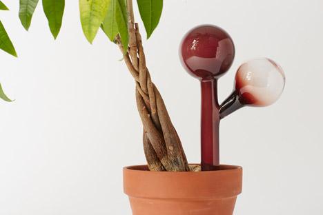 indoor-gardening-project-by-anderssen-and-voll-for-mjolk_dezeen_468_14
