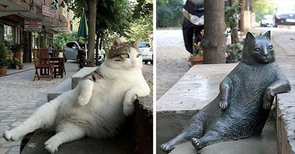 還記得超可愛的悠閒胖貓嗎?雖然牠過世了,但有一萬七千名土耳其人為他請願立了銅像