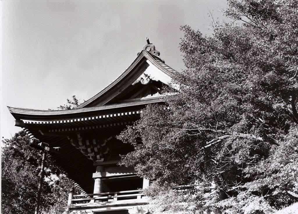 日本東京高尾山賞楓紀實,重要看點+攝影集懶人包(上)